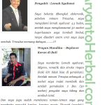 Obat Lemah Syahwat Tradisional AMPUH