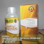 QnC Jelly Gamat Pekanbaru Riau