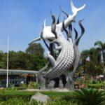Agen QnC Jelly Gamat Surabaya